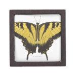 Mariposa occidental de Swallowtail del tigre Caja De Joyas De Calidad