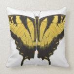 Mariposa occidental de Swallowtail del tigre Cojín