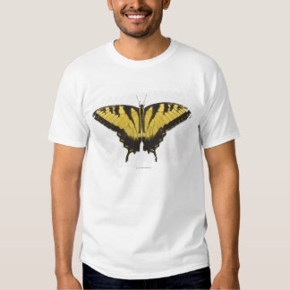 Mariposa occidental de Swallowtail del tigre Polera