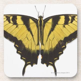 Mariposa occidental de Swallowtail del tigre Posavasos De Bebidas