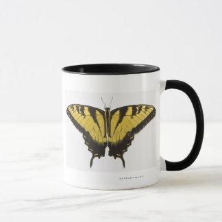 Mariposa occidental de Swallowtail del tigre Taza