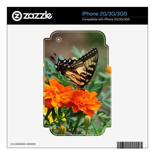 Mariposa Papilio Machaon de Swallowtail del Viejo  Calcomanías Para iPhone 3