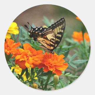 Mariposa Papilio Machaon de Swallowtail del Viejo Pegatina Redonda