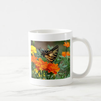 Mariposa Papilio Machaon de Swallowtail del Viejo  Tazas De Café