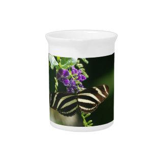 Mariposa perfecta de la cebra jarras