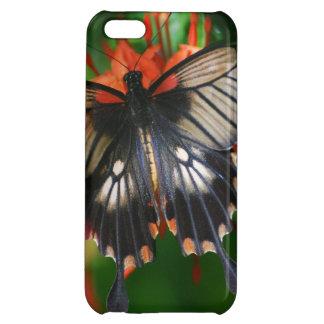Mariposa perfecta de Swallowtail