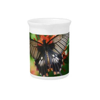 Mariposa perfecta de Swallowtail Jarras