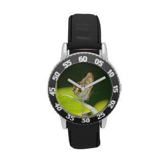 Mariposa perfecta reloj