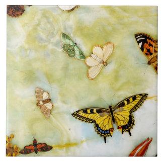Mariposa Pietra Dura Azulejo Cuadrado Grande
