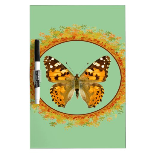 Mariposa pintada aislada de la señora pizarra blanca