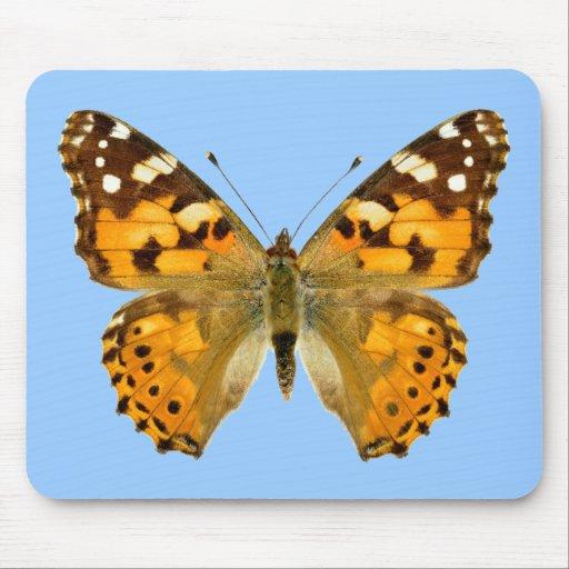 Mariposa pintada aislada de la señora tapetes de raton