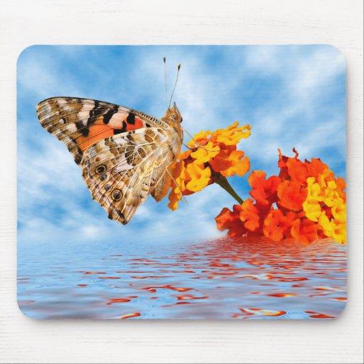 Mariposa pintada de la señora en la flor tapetes de ratones