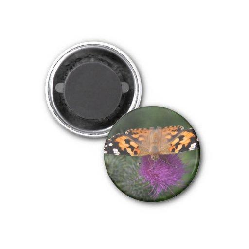Mariposa pintada de la señora imán de nevera