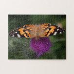 Mariposa pintada de la señora puzzle con fotos