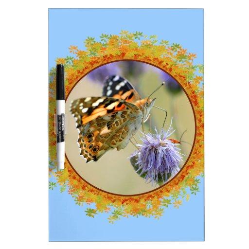 Mariposa pintada de la señora que alimenta en el m pizarra blanca