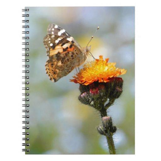 Mariposa pintada de la señora que alimenta en la f libro de apuntes