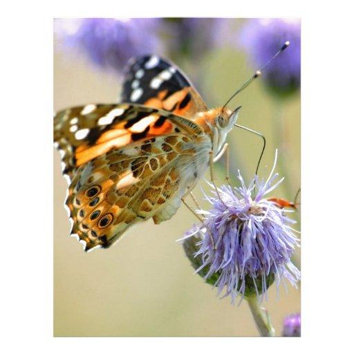 Mariposa pintada de la señora que alimenta en la f membrete