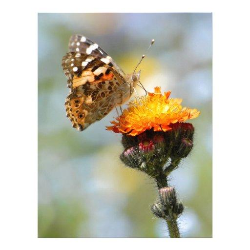 Mariposa pintada de la señora que alimenta en la f membrete personalizado