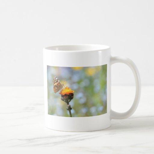 Mariposa pintada de la señora que alimenta en la f taza de café