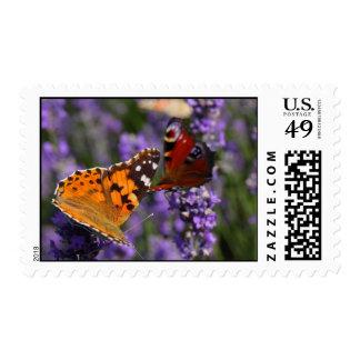 mariposa pintada de la señora y de pavo real sellos postales
