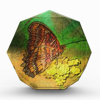Mariposa pintada en tronco de la flor