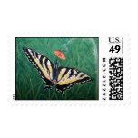 Mariposa - pintura de acrílico envio