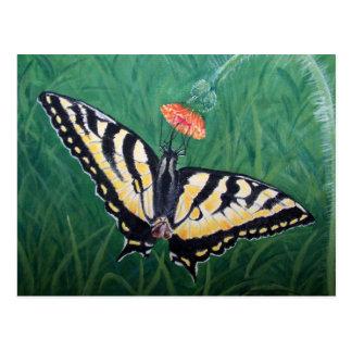 Mariposa - pintura de acrílico tarjetas postales