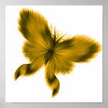 Mariposa plumosa 4 poster