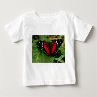 Mariposa Polera