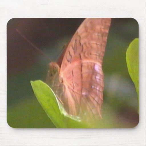 Mariposa preciosa alfombrilla de ratón