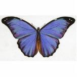 Mariposa púrpura azul del vintage imán fotoescultura