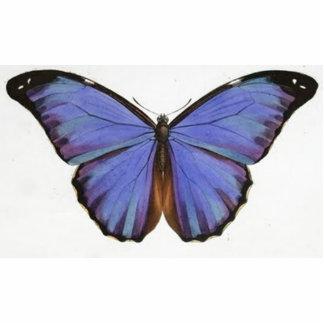 Mariposa púrpura azul del vintage escultura fotográfica