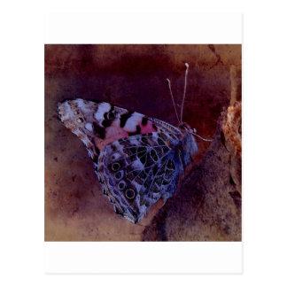 Mariposa púrpura tarjeta postal