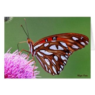 Mariposa que alimenta en el cardo - Tejas Tarjeta De Felicitación