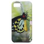 Mariposa que descansa - compañero del caso duro iPhone 5 protector