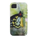 Mariposa que descansa - compañero del caso duro Case-Mate iPhone 4 funda