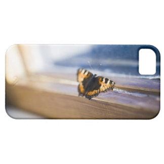 Mariposa que intenta salir, Suecia iPhone 5 Case-Mate Carcasas
