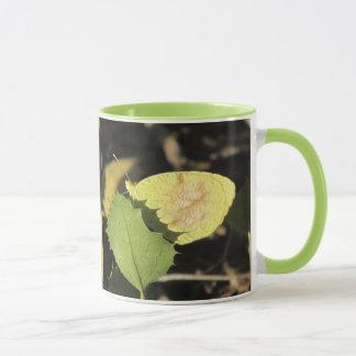 Mariposa que oculta detrás de una taza de la hoja