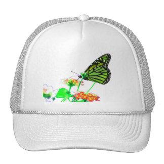 Mariposa que siente verde gorro