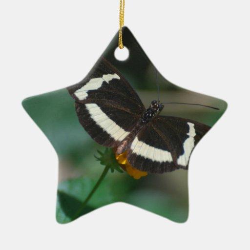 Mariposa rayada blanco y negro adorno navideño de cerámica en forma de estrella
