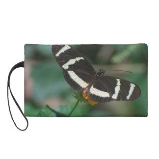 Mariposa rayada blanco y negro