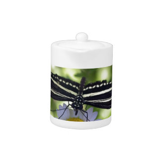 Mariposa rayada blanco y negro hermosa