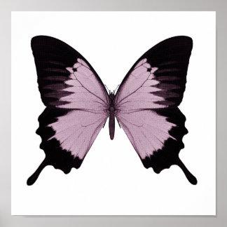 Mariposa rosada y negra grande - personalice posters