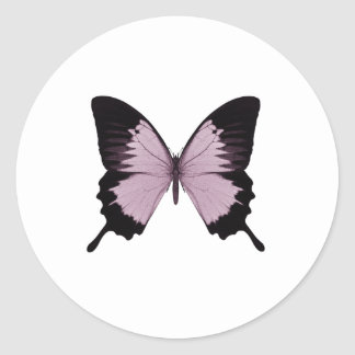 Mariposa rosada y negra grande - personalice pegatina redonda