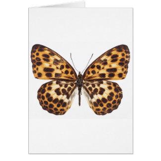 mariposa - sea su uno mismo auténtico tarjeta