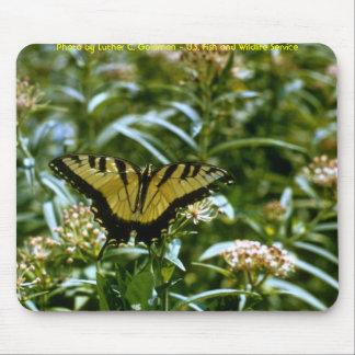 Mariposa - tigre Swallowtail Mousepad