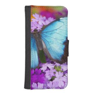 Mariposa tropical 7 de Sammamish Washington Fundas Billetera De iPhone 5