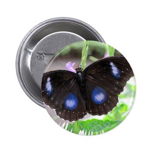 Mariposa tropical pin redondo 5 cm