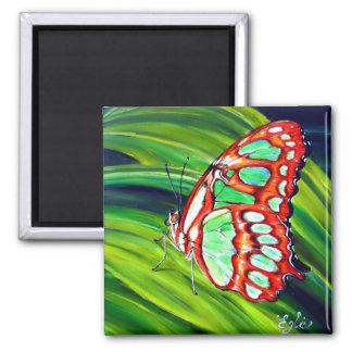 Mariposa verde de la malaquita imán cuadrado
