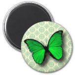 Mariposa verde en modelo del vintage imán de frigorífico